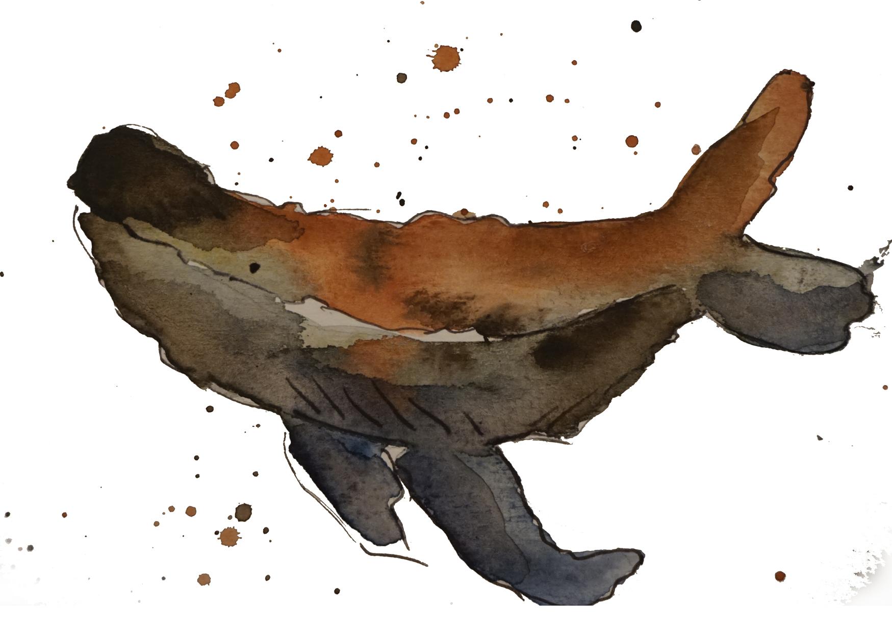 Illustrationsbeispiel - Eva Schulz - Auf der Webseite www.aschaffenbuch.de